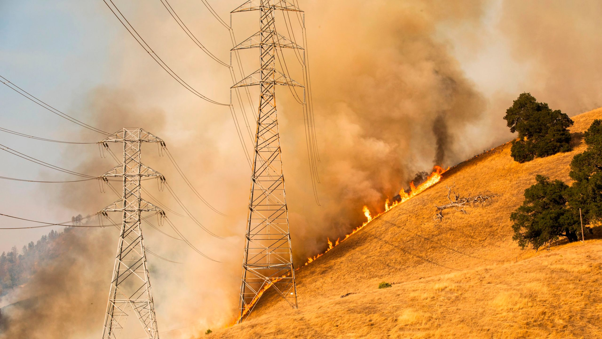 A back fire set by fire fighters burns a hillside behind PG&E power lines during firefighting operations to battle the Kincade Fire in Healdsburg, California, on Oct. 26, 2019. (PHILIP PACHECO/AFP via Getty Images)