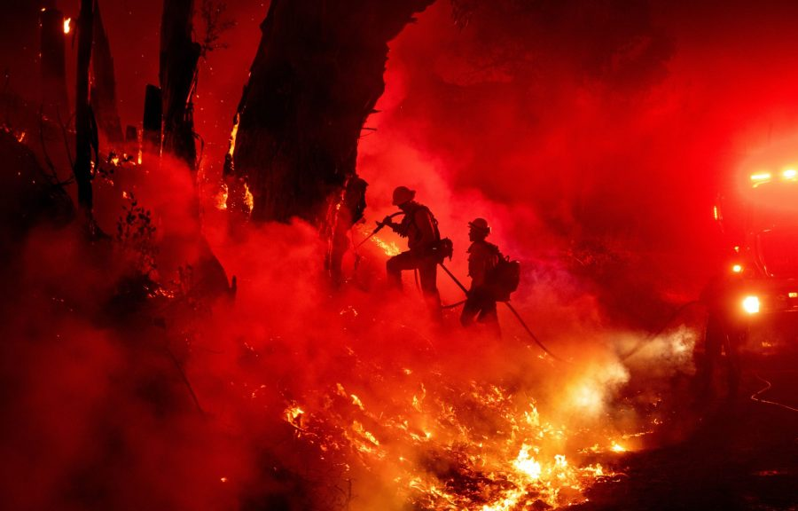 Firefighters work to control flames from a backfire, which is a blaze set along the inner edge of a fireline to burn fuel in the path of a wildfire, during the Maria Fire near Santa Paula on Nov. 1, 2019. (Credit: JOSH EDELSON/AFP via Getty Images)