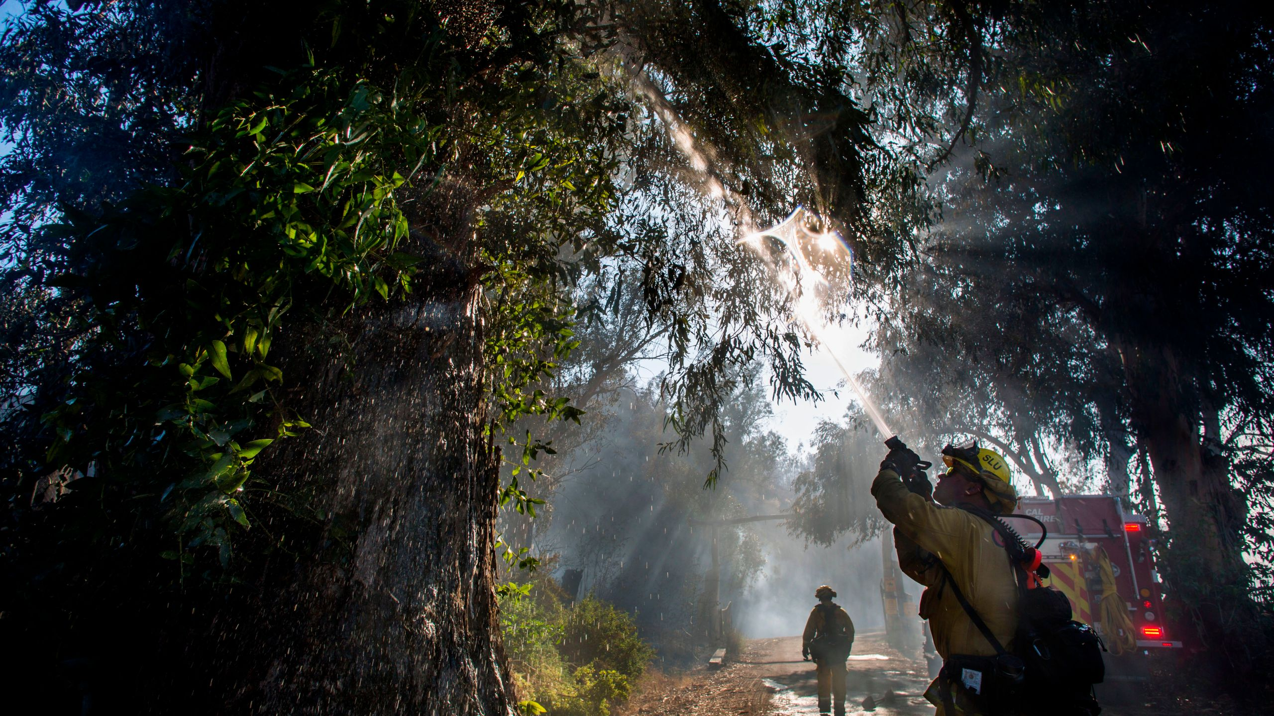 Firefighters douse flames in a tree at South Mountain Road during the Maria Fire, in Santa Paula, Calif. on Nov. 1, 2019. (Credit: Apu Gomes / AFP via Getty Images)