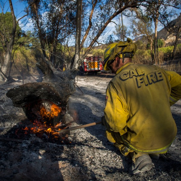 A firefighter controls a hotspot of the Maria Fire, in Santa Paula, Calif. on Nov. 2, 2019. (Credit: APU GOMES/AFP via Getty Images)