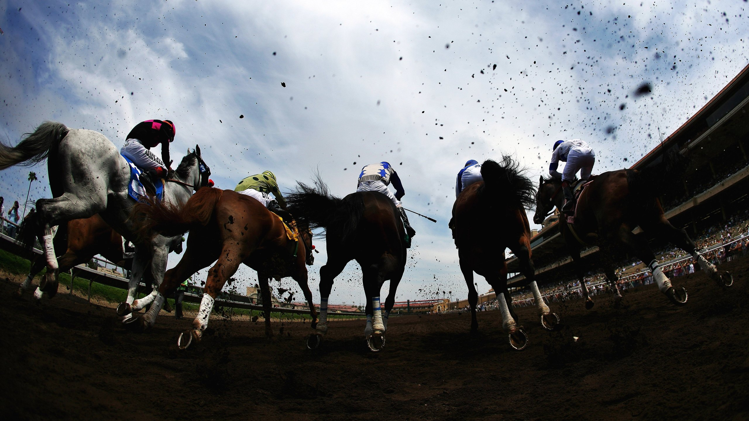 A general view of the horses breaking at the gate at the Del Mar Racetrack on July 19, 2006. (Credit: Donald Miralle/Getty Images)