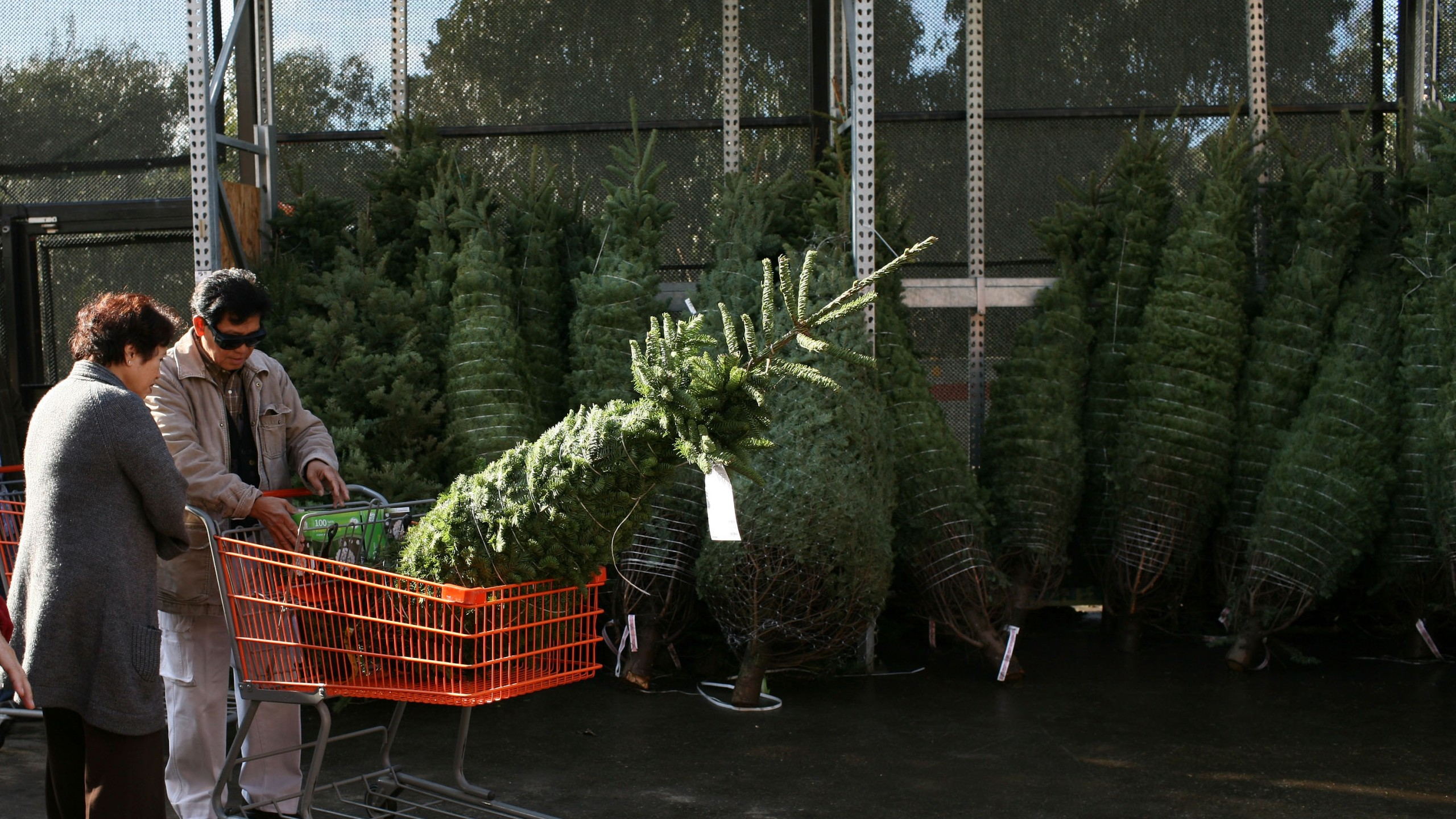 Customers prepare to purchase a Christmas tree at a Home Depot store on Dec. 2, 2008 in Colma, California. (Credit: Justin Sullivan/Getty Images)