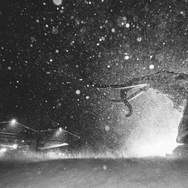 Snow fell at Mammoth Mountain Resort on Nov. 26, 2019. (Credit: Peter Morning / MMSA)