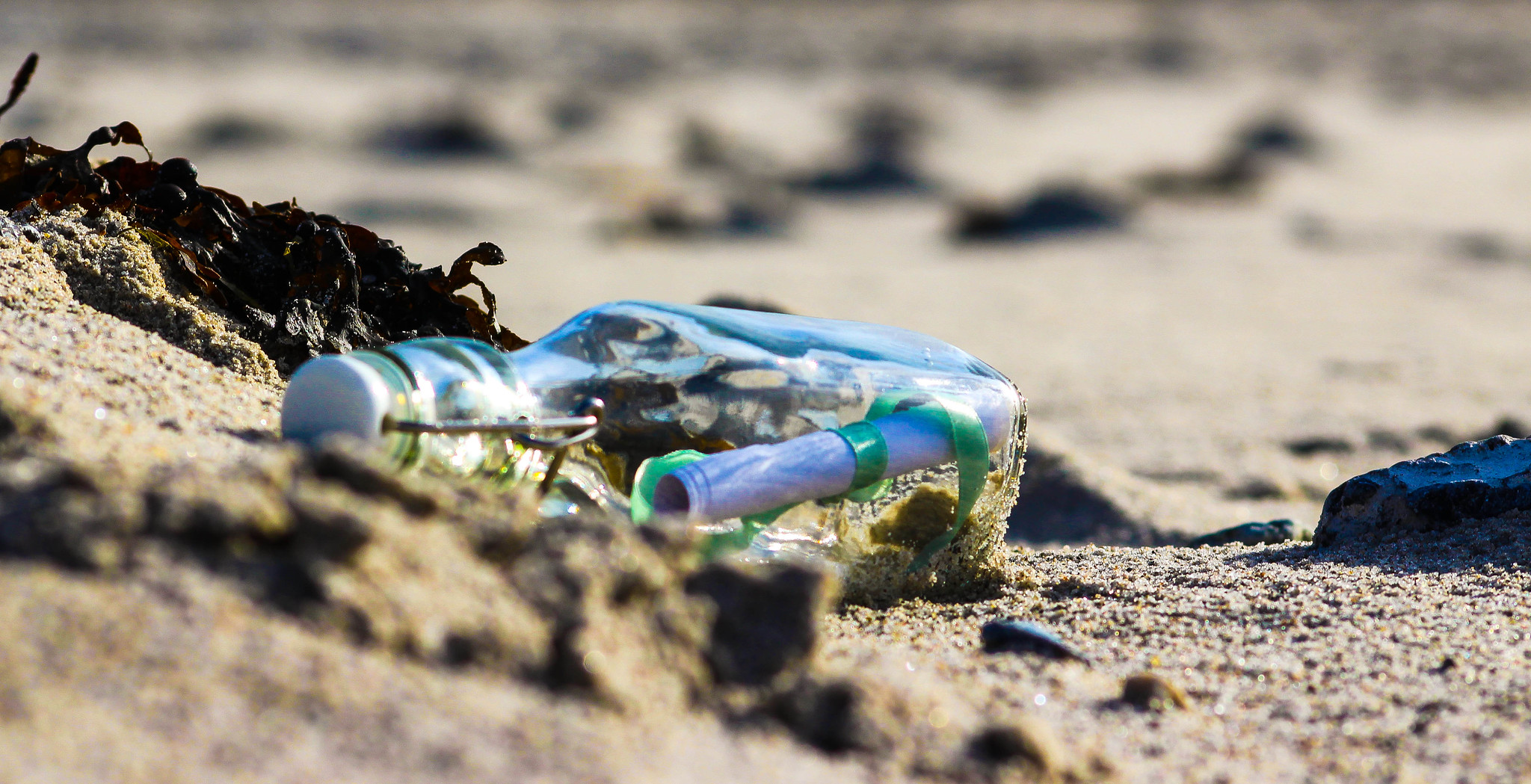 Photo of a message in a bottle Nov. 11, 2019