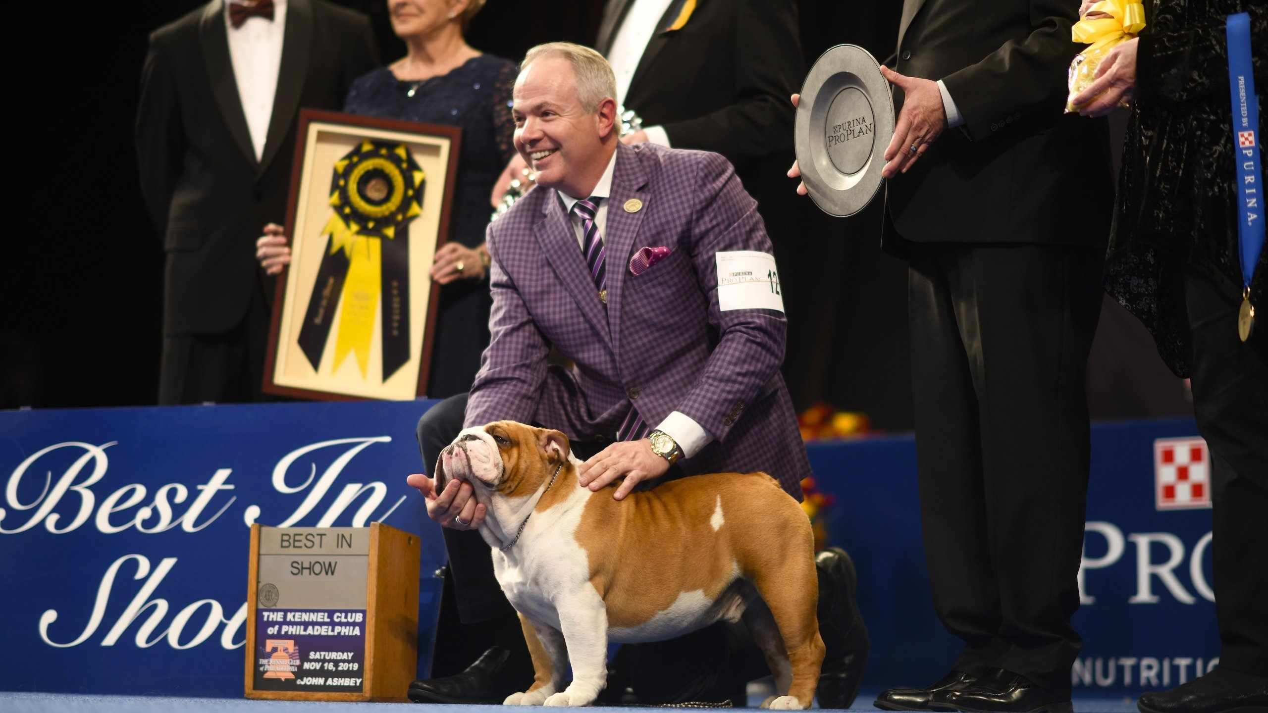 """A Bulldog named Thor poses for a photo after winning """"Best in Show"""" at the Greater Philadelphia Expo Center. (Credit: Mark Makela/Getty Images via CNN)"""