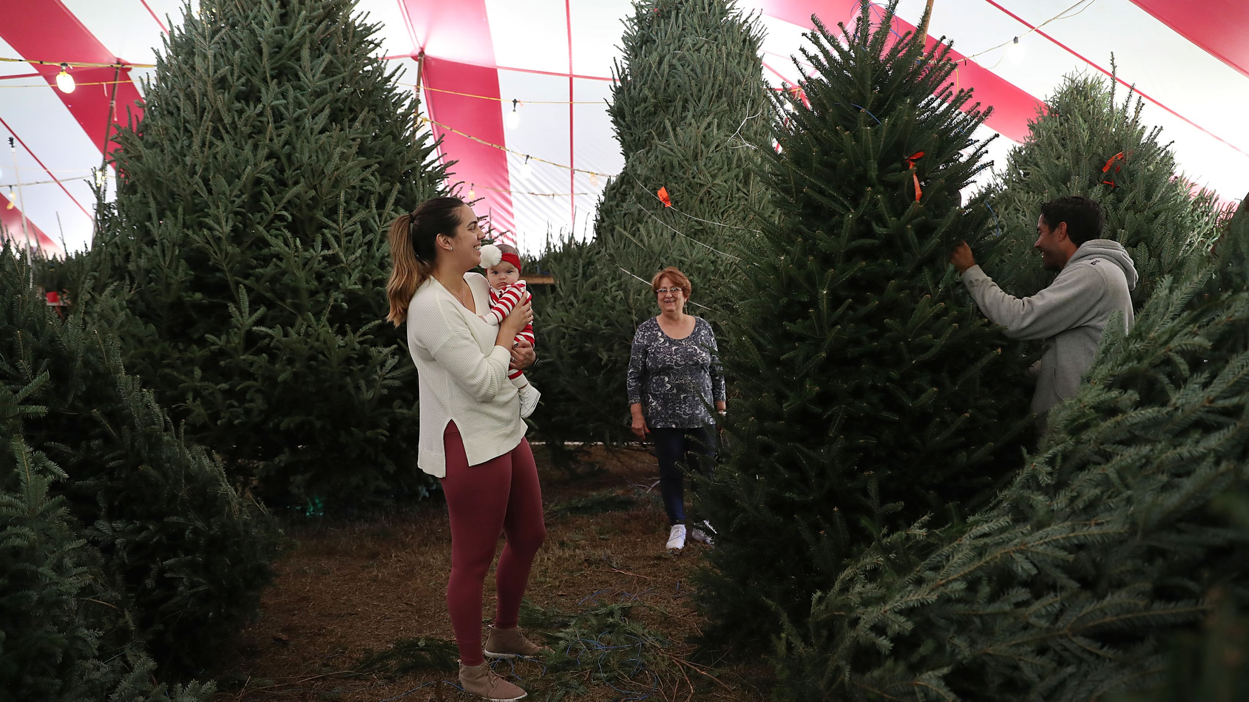 A woman holds her daughter as she shops for a Christmas tree on Nov. 29, 2018, in Miami, Florida. (Credit: Joe Raedle/Getty Images)