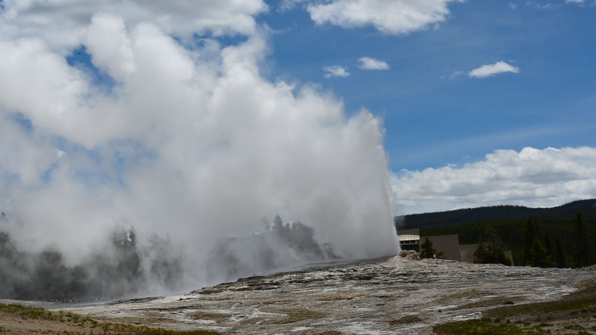 Old Faithful geyser erupts in Yellowstone National Park on June 11, 2019. (Credit:DANIEL SLIM/Getty)