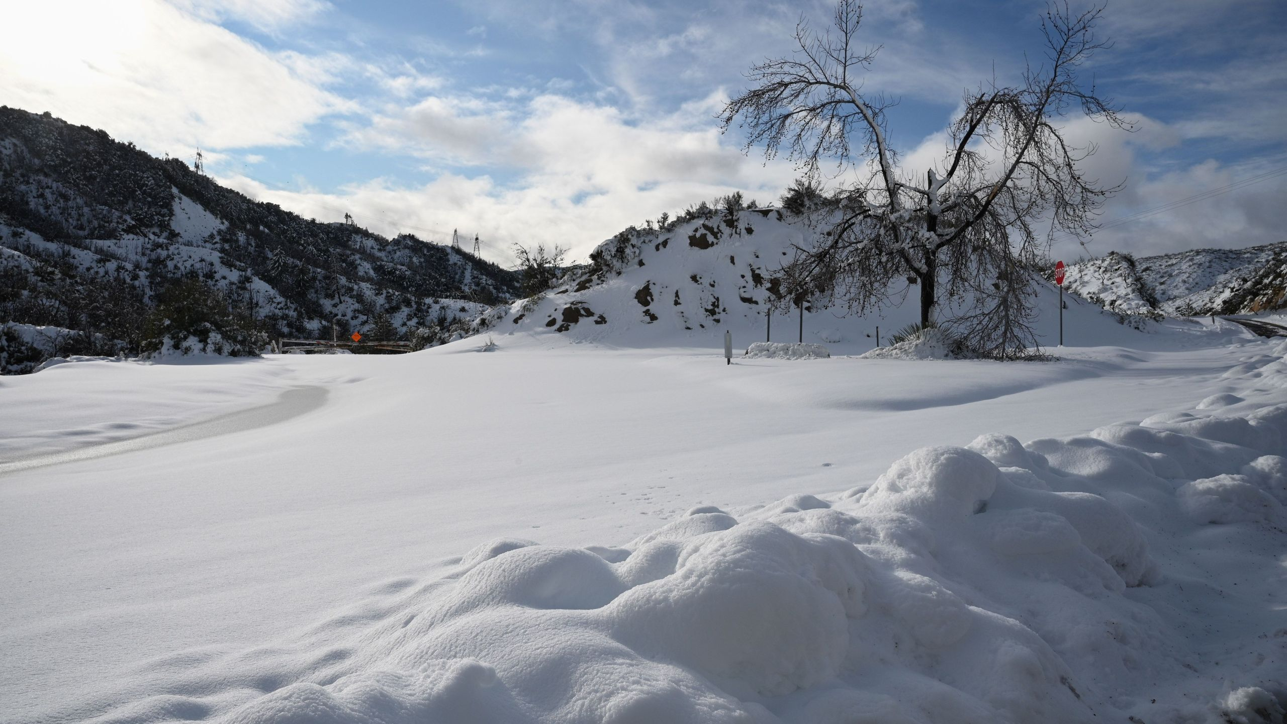 Snow blankets the Angeles National Forest north of Los Angeles, California Dec. 26, 2019. (Credit: Robyn Beck / Getty)