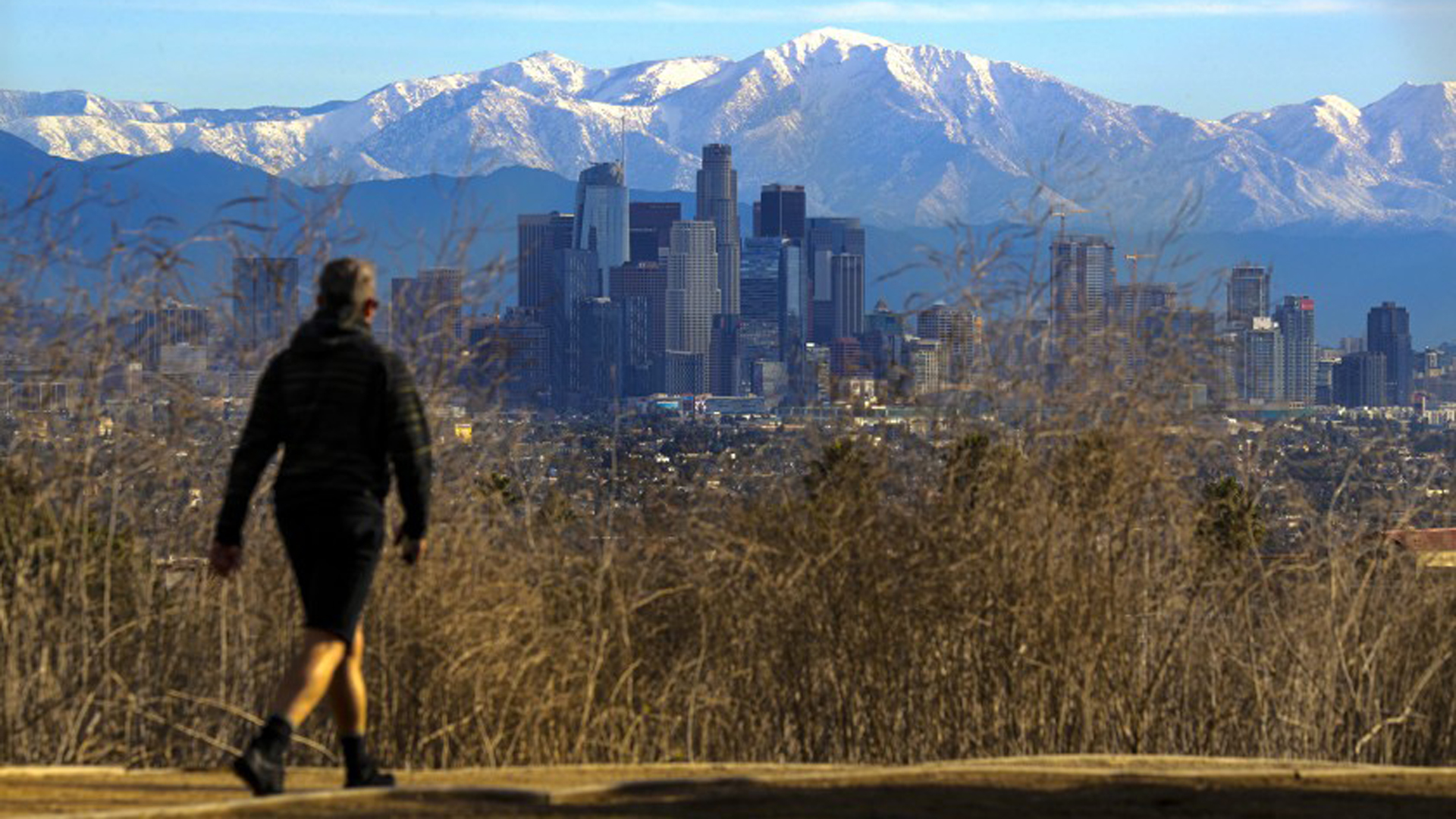 The downtown L.A. skyline and snowy mountains are seen from Kenneth Hahn State Recreation Area on Nov. 30, 2019. (Credit: Irfan Khan / Los Angeles Times)