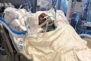 Syed Ali lies in a hospital bed in this undated photo posted to a GoFundMe page.
