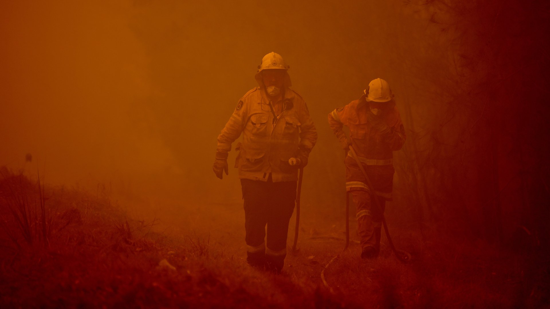 Firefighters tackle a bushfire in thick smoke in the town of Moruya, south of Batemans Bay, in New South Wales on January 4, 2020. (Credit: PETER PARKS/AFP via Getty Images)
