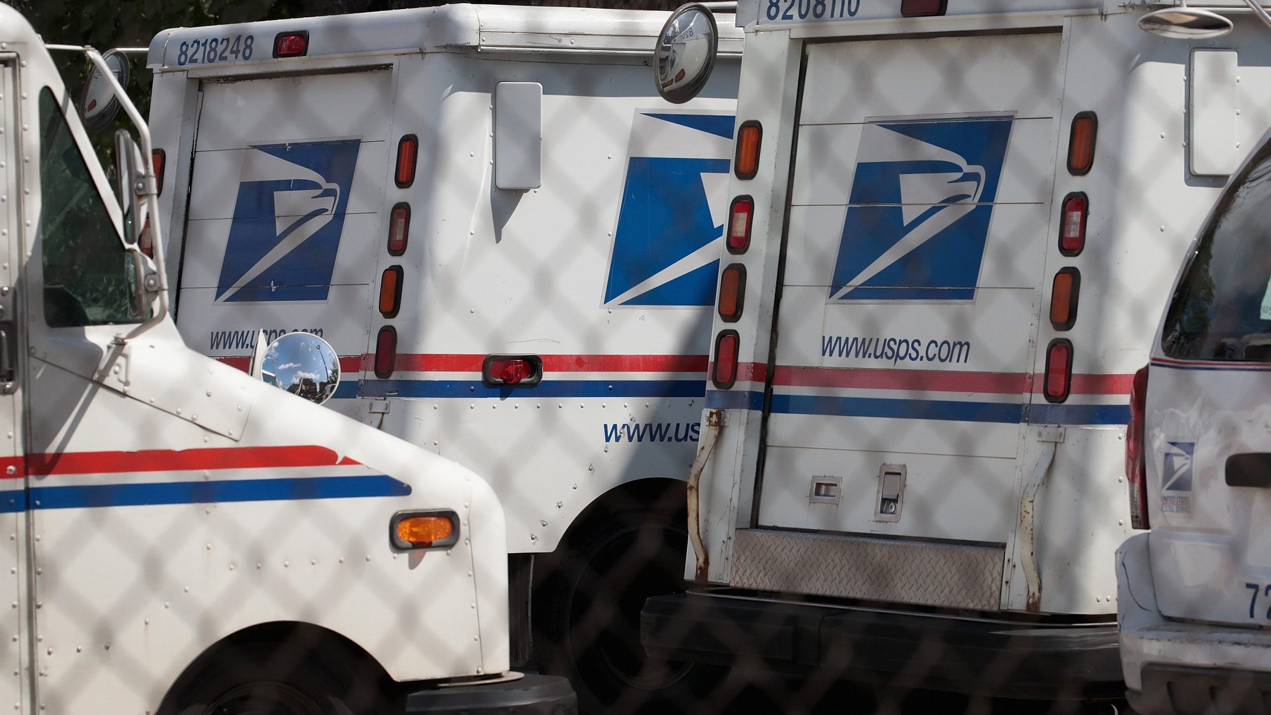 United States Postal Service (USPS) trucks are parked at a postal facility on August 15, 2019 in Chicago, Illinois. (Credit: Scott Olson/Getty Images)