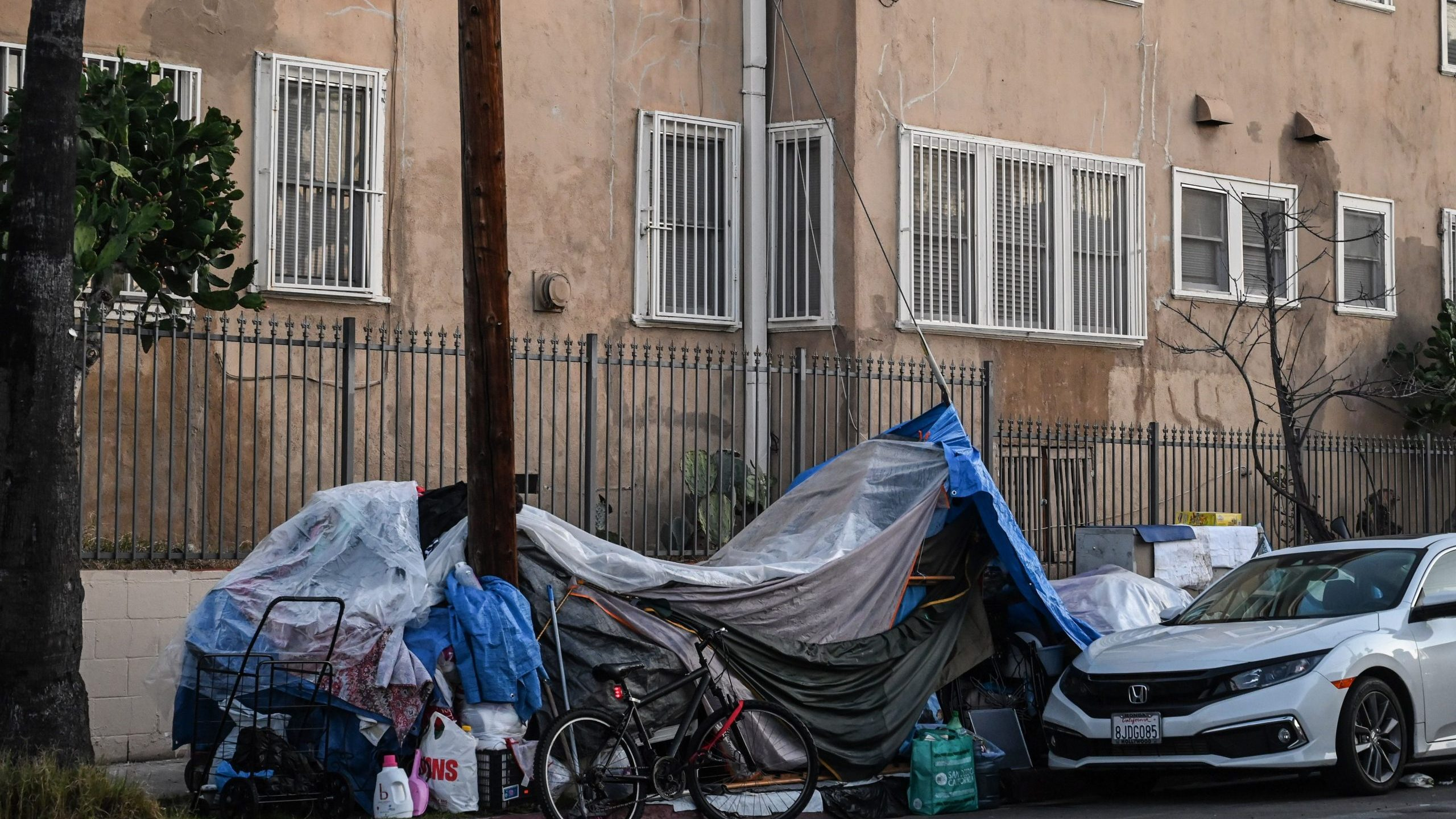 Tents sheltering homeless people line a residential street in Los Angeles on Dec. 9, 2019. (Credit: Robyn Beck/AFP via Getty Images)