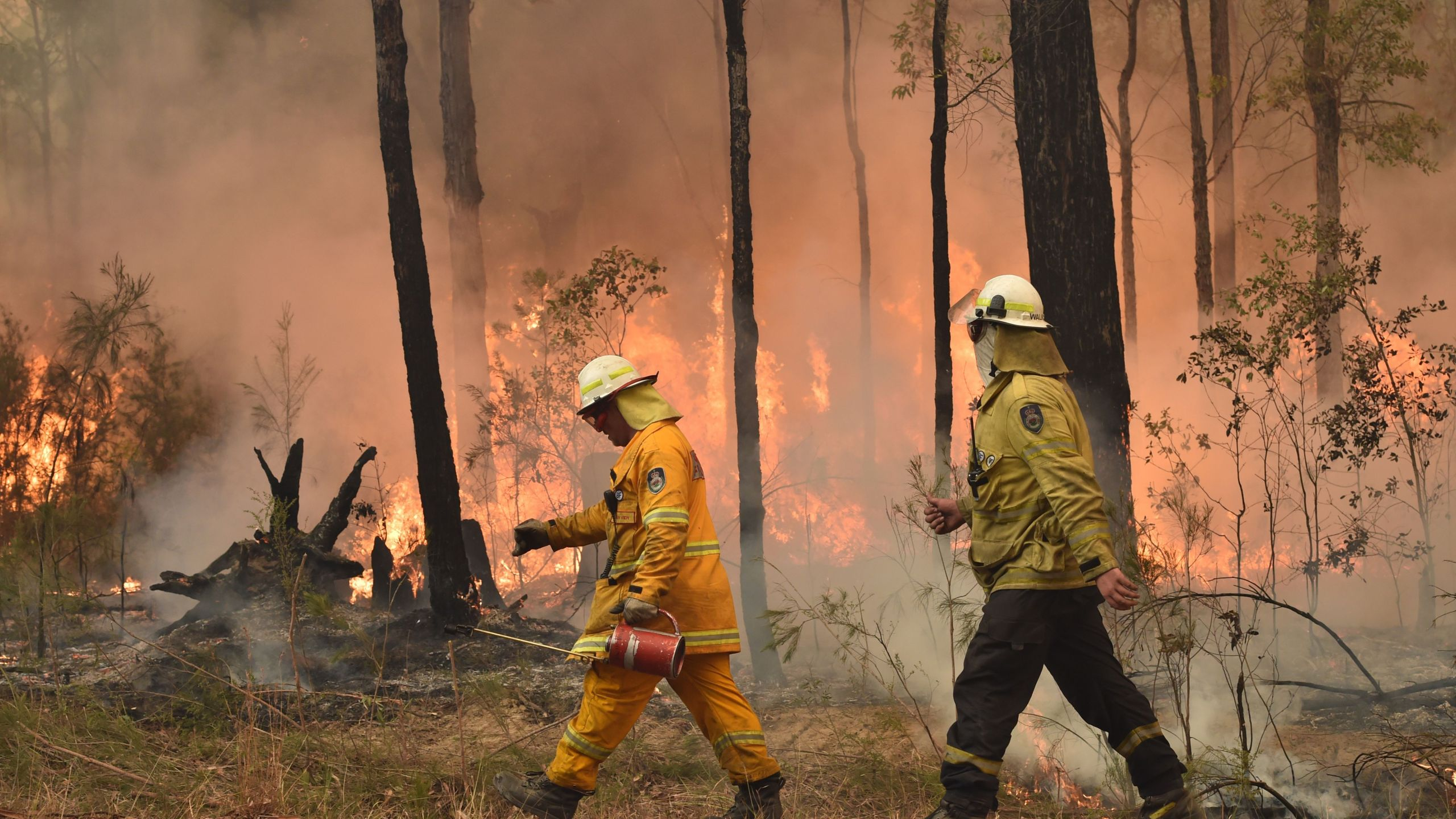 Firefighters create a back burn ahead of a fire front in the New South Wales town of Jerrawangala on Jan. 1, 2020. A major operation to reach thousands of people stranded in fire-ravaged seaside towns was underway after deadly bushfires ripped through popular tourist spots and rural areas, leaving at least eight people dead. (Credit: PETER PARKS/AFP via Getty Images)