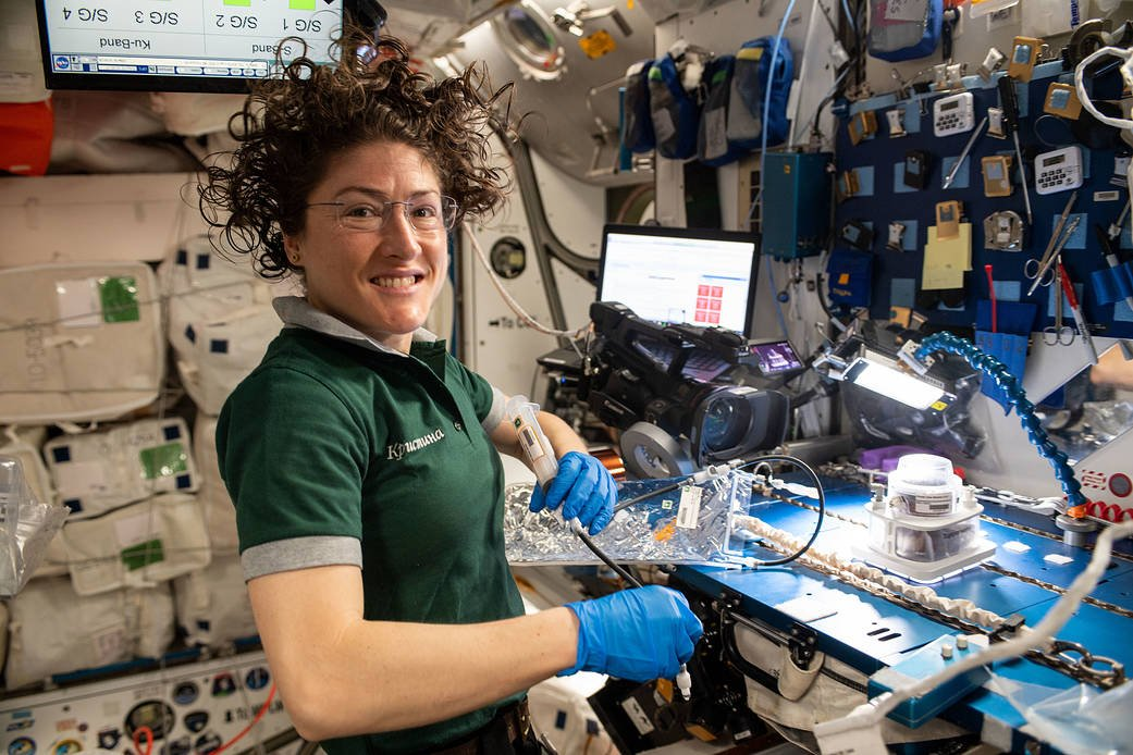 NASA astronaut Christina Koch works on space botany on the International Space Station April 25, 2019. (Credit: NASA)