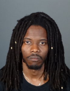 Evan McLaurin-Nelson, 31, described as transient, pictured in a photo released by the Los Angeles Police Department following his arrest on Jan. 4, 2020.