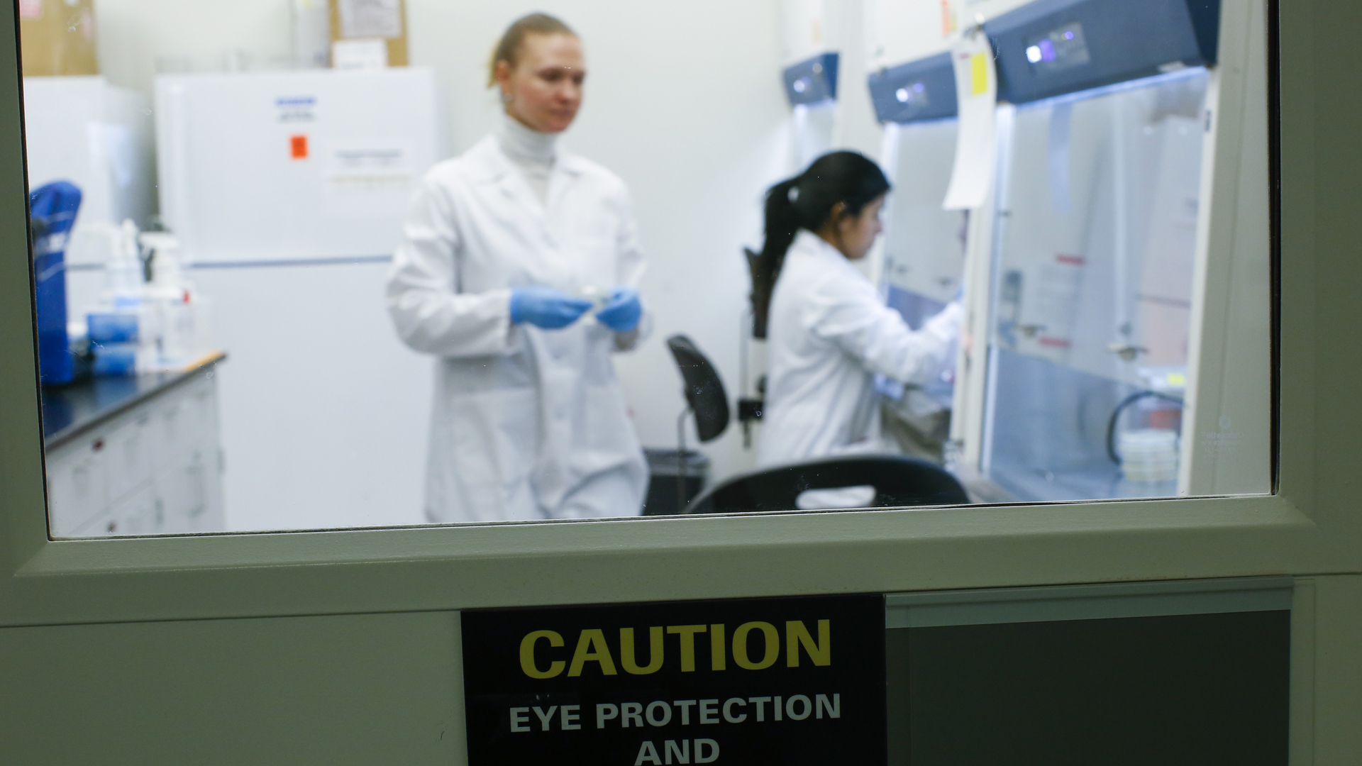 A researcher works in a lab that is developing testing for the COVID-19 coronavirus at Hackensack Meridian Health Center for Discovery and Innovation on February 28, 2020 in Nutley, New Jersey. (PCredit: Kena Betancur/Getty Images)