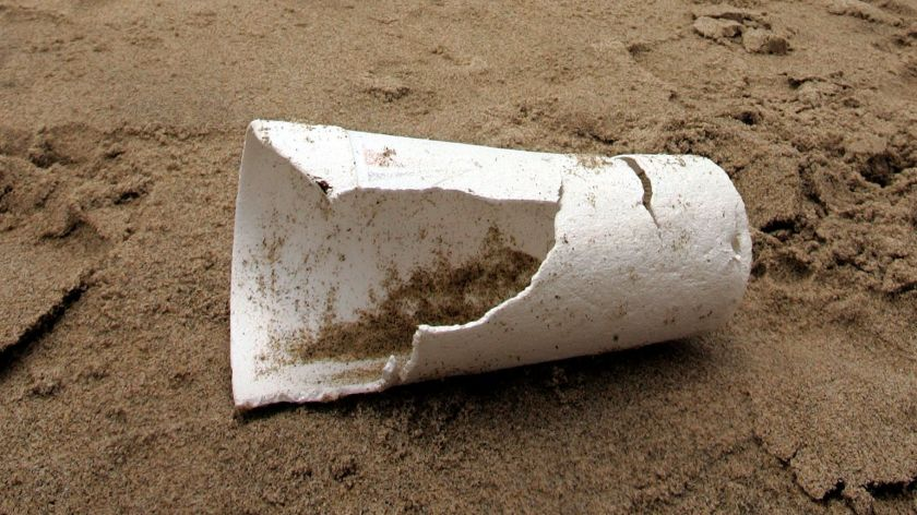 A discarded polystyrene cup lies near the shoreline at Santa Monica Beach in 2006. (Mel Melcon / Los Angeles Times)