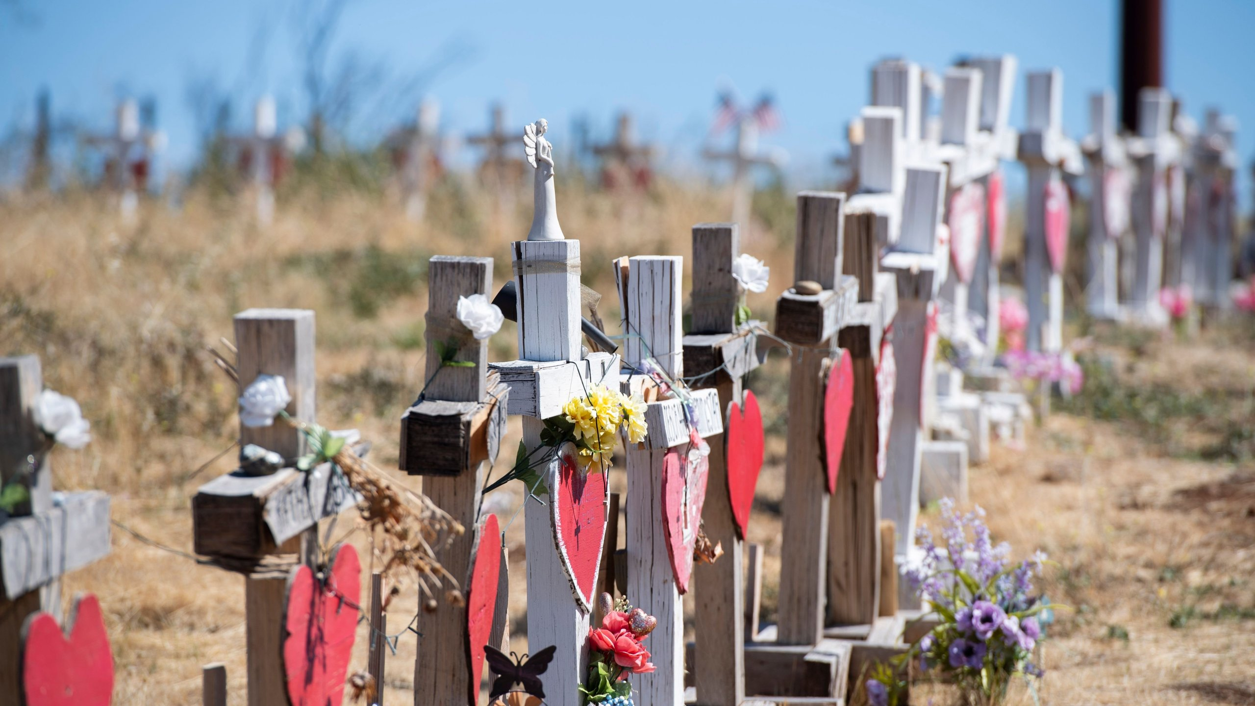 Crosses line a road in Paradise on Oct. 2, 2019, in honor of those who died as a result of the Camp Fire. (Credit: Robyn Beck / AFP / Getty Images)