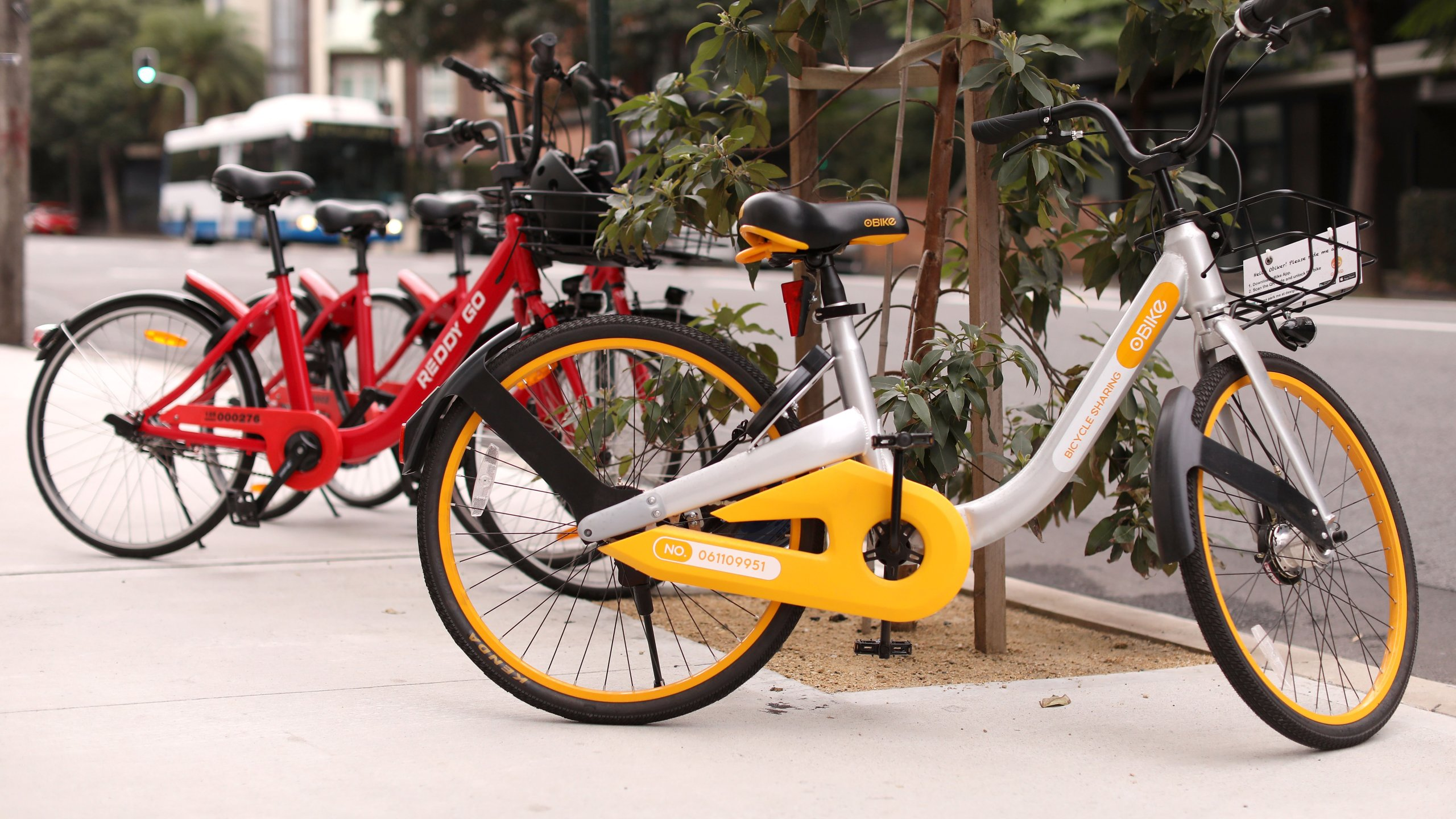 An O Bike and two Reddy Go bicycles are seen on August 15, 2017 in Sydney, Australia. New dockless bike sharing service including O Bike and Reddy Go have launched in Sydney, allowing commuters to rent and return bikes wherever they like via a smartphone app. (Photo by Mark Kolbe/Getty Images)