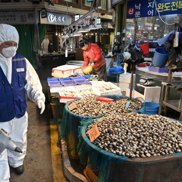 A worker from the Korea Pest Control Association, wearing protective gear, sprays disinfectant to help prevent the spread of the COVID-19 novel coronavirus at a market in Seoul on February 24, 2020. (Credit: Jung Yeon-Je/AFP via Getty Images)