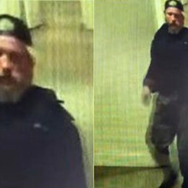 A man who allegedly sexually assaulted a person in a Malibu apartment is shown in photos released by the Los Angeles County Sheriff's Department on Feb. 17, 2020.