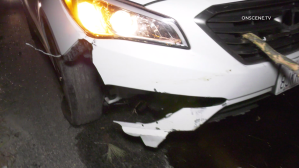 A car sustained damages after hitting a downed tree on the 118 Freeway near Reseda Boulevard on Feb. 3, 2020. (Credit: Onscene.tv)