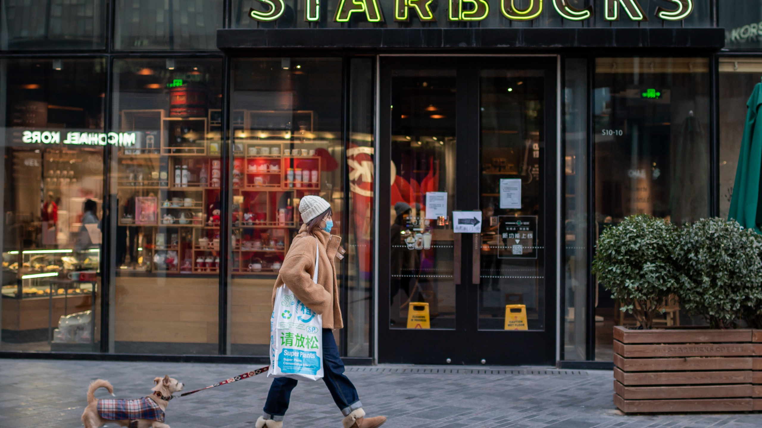A woman, wearing a protective facemask, walks past a Starbucks coffee shop with her dog in Beijing on Jan. 30, 2020. (NICOLAS ASFOURI/AFP via Getty Images)