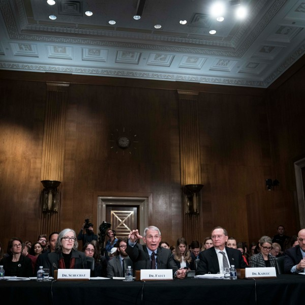 "Anne Schuchat, principal deputy director of the Centers for Disease Control and Prevention; Anthony Fauci, director of the National Institute of Health's National Institute of Allergy and Infectious Diseases; Robert Kadlec, assistant health and human services secretary for preparedness and response; and Stephen Hahn, commissioner of the Food and Drug Administration, testify before the Senate Health, Education, Labor and Pensions Committee during a hearing on ""An Emerging Disease Threat: How the U.S. Is Responding to COVID-19, the Novel Coronavirus"" on March 3, 2020, in Washington, D.C. (Sarah Silbiger/Getty Images)"