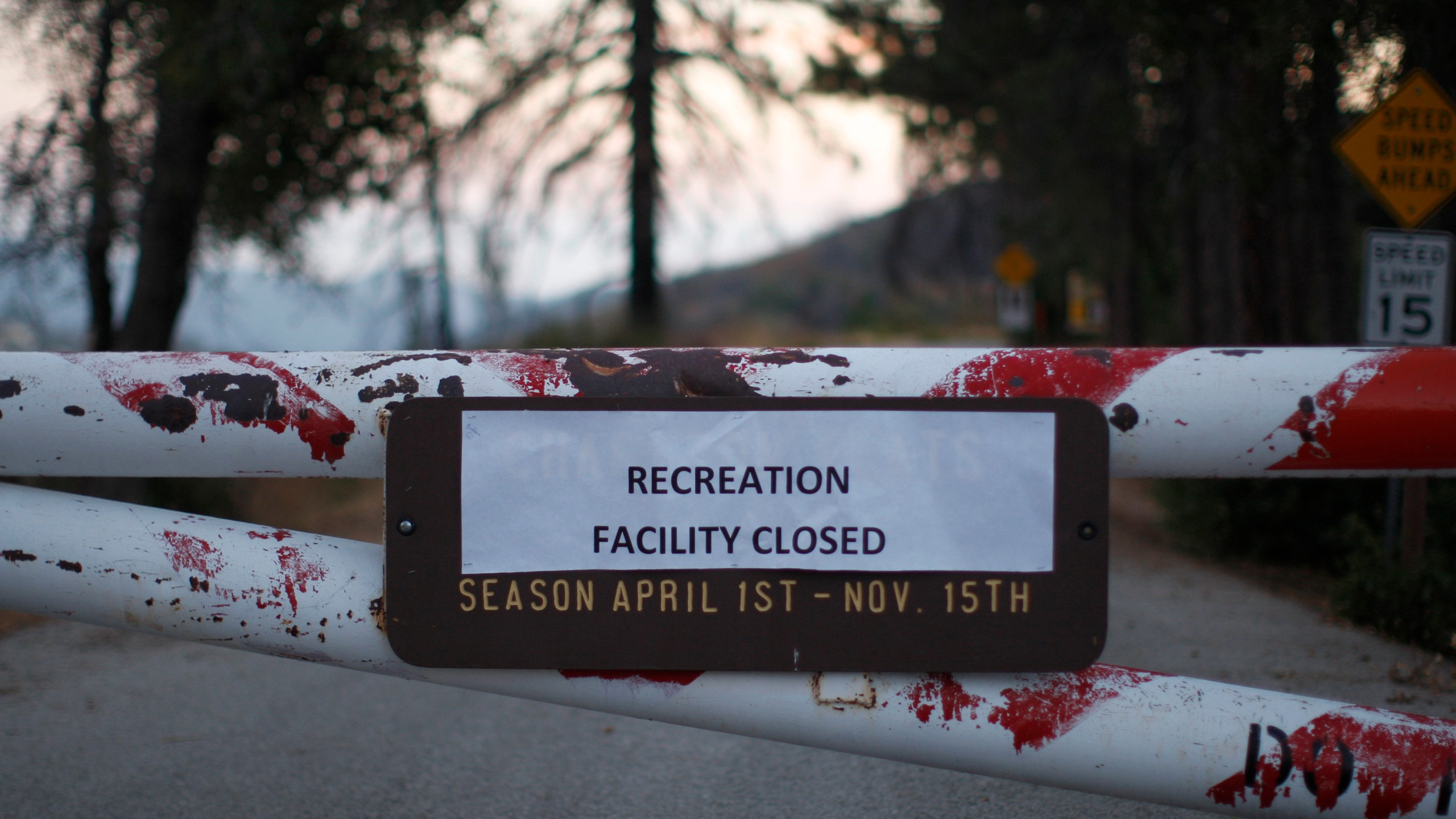Access to the Charlton Flat campground is blocked by a locked gate in the Angeles National Forest on Oct. 2, 2013, in the San Gabriel Mountains, northeast of Los Angeles. (David McNew/Getty Images)