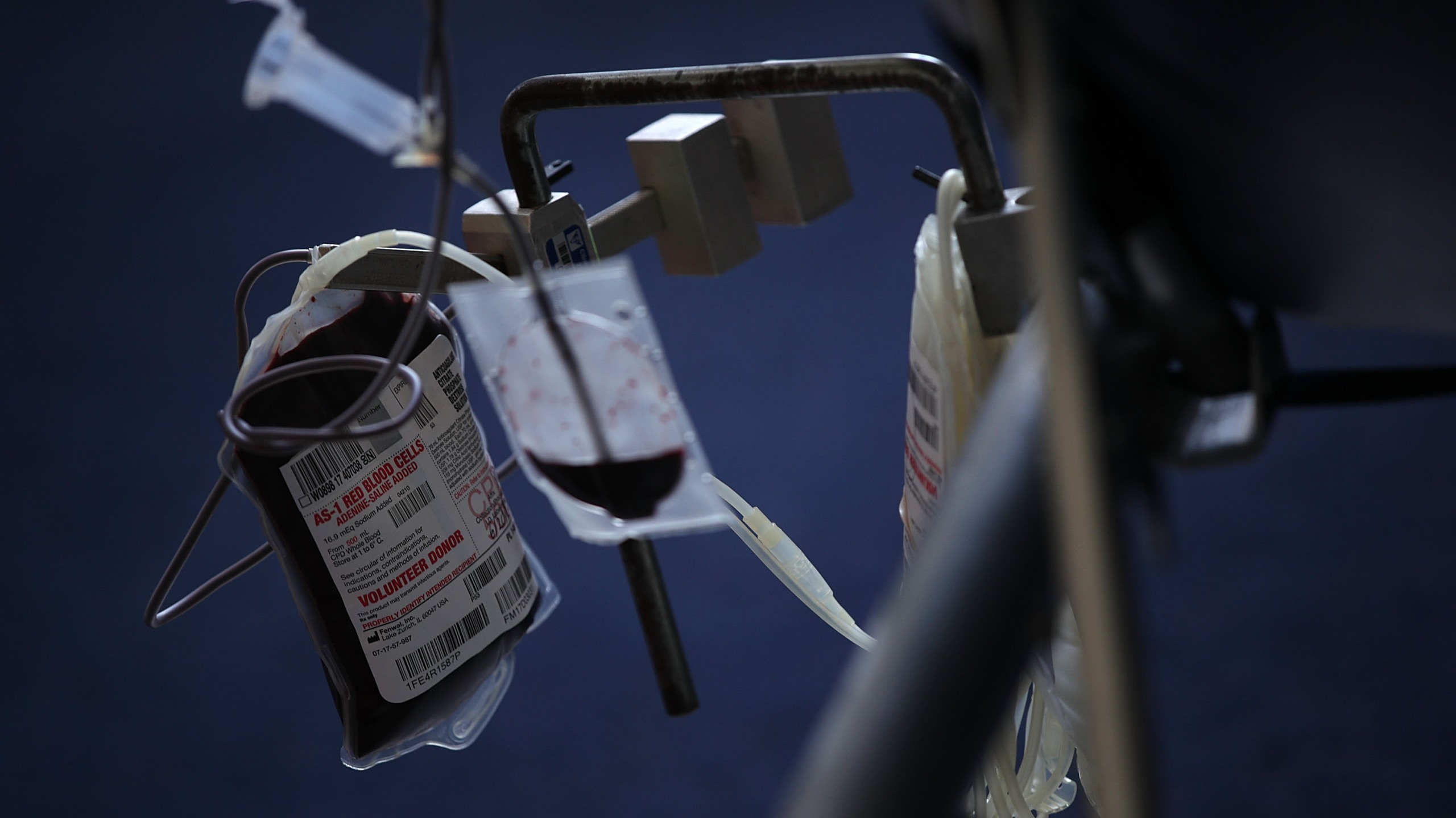 Blood is collected from a donor into a bag during a blood drive in this file photo. (Alex Wong/Getty Images)