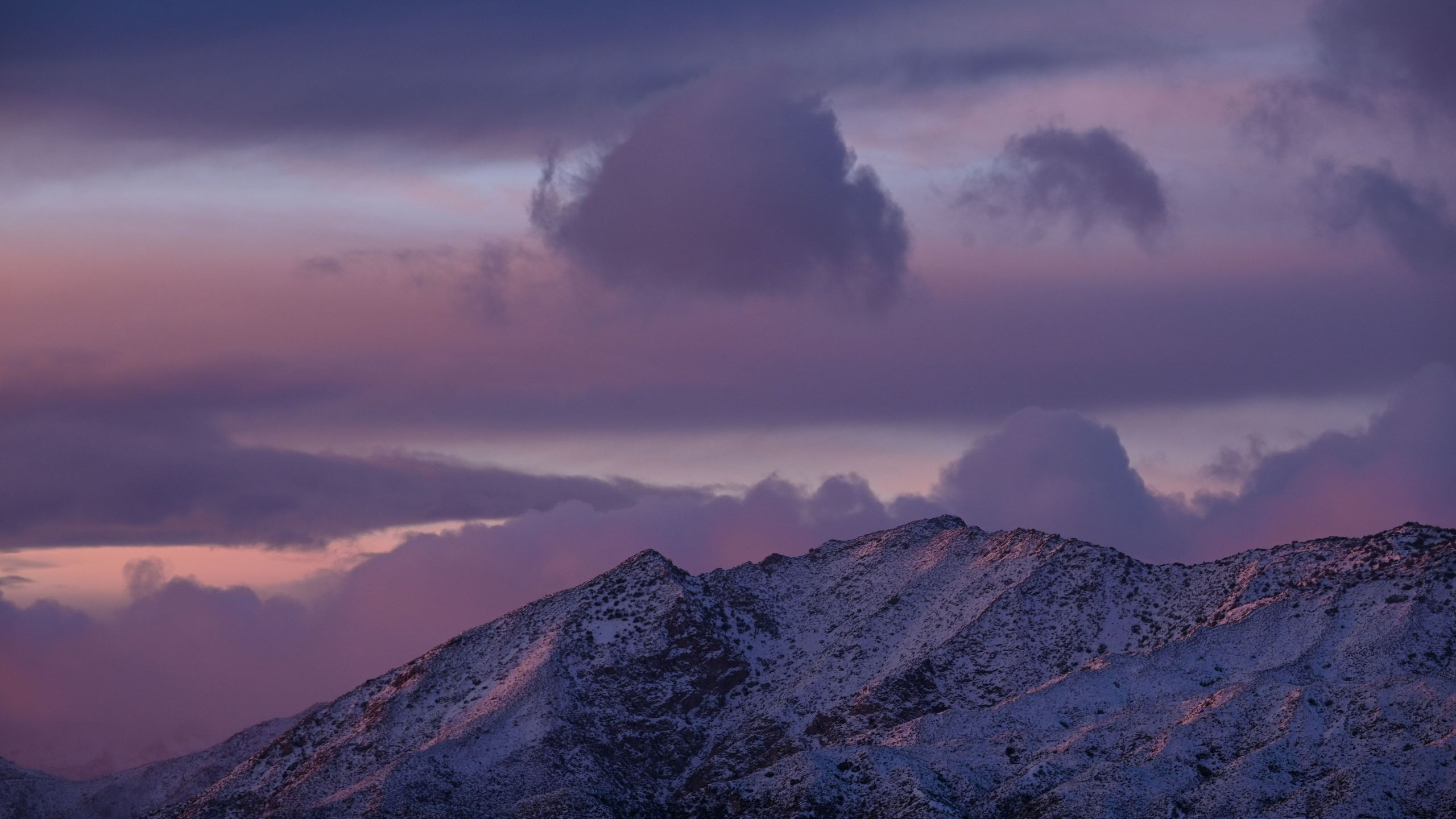 Snow blankets the Angeles National Forest north of Los Angeles on Dec. 26, 2019, after a cold winter storm brought heavy rain, snow and strong winds to much of southern California. (Robyn Beck / AFP / Getty mages)