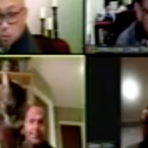 A screenshot from a Zoom meeting posted on the city of Vallejo's website on April 26, 2020 shows Chris Platzer holding up his cat.