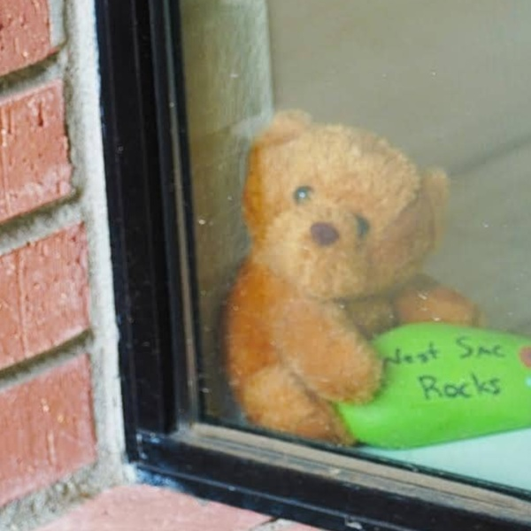 """While Yolo County was under shelter-in-place orders, officials in one of its cities, West Sacramento, asked residents to display teddy bears in their windows to create a """"bear hunt"""" for children to spot while on walks as schools and playgrounds remained closed. (City of West Sacramento, Government/ Facebook)"""