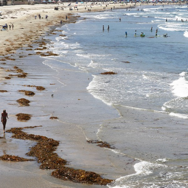 Beachgoers gather near Scripps Pier on August 7, 2018, in San Diego, California. (Mario Tama/Getty Images)