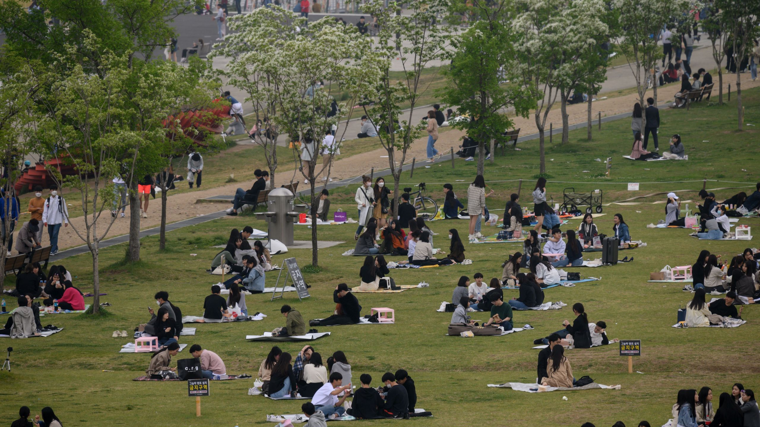 In a photo taken on May 10, 2020, people sit in a park in Seoul. (ED JONES/AFP via Getty Images)