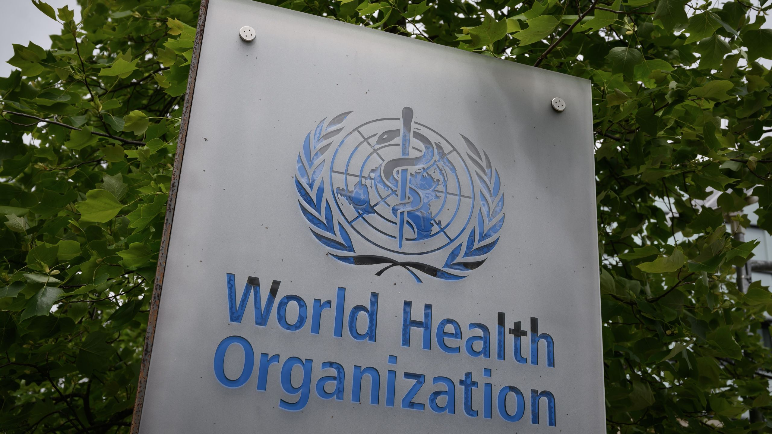 This picture taken on May 12, 2020, shows a sign of the World Health Organization in Geneva next to their headquarters. (FABRICE COFFRINI/AFP via Getty Images)