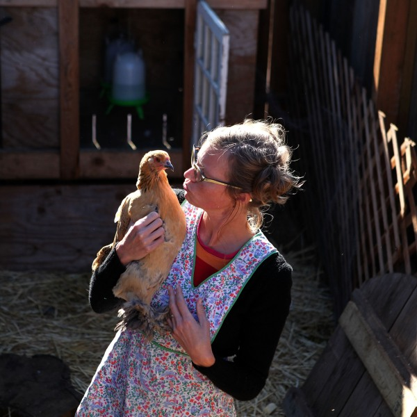 """Heidi Kooy holds one of her chickens as she walks through her yard which she calls the """"Itty Bitty Farm in the City"""" November 16, 2009 in San Francisco, California. (Justin Sullivan/Getty Images)"""