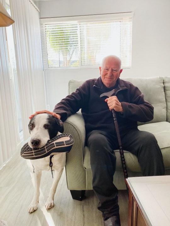 Hayrik Abnous is seen in a photo taken by his granddaughter, Vana Ebrahimi, in Glendale.