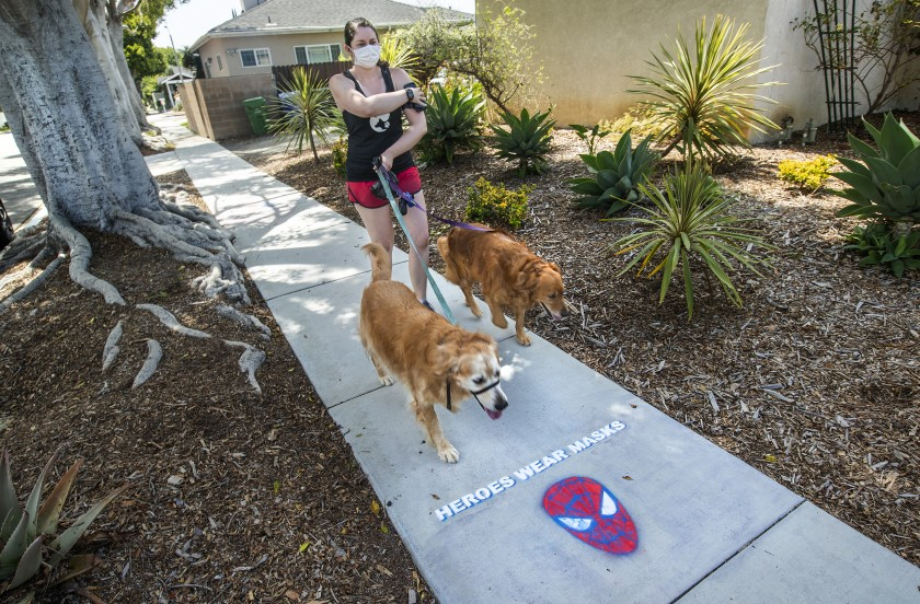 On Wednesday, Dr. Christina Ghaly, director of health services for L.A. County, said an increasing downturn in the daily number of new confirmed cases suggested that the effective transmission number was now slightly under 1. In this photo, Lindsay Rojas, owner of Lindsay's Dog Walks in Culver City, walks golden retrievers Gomez, left, and Nikki.(Mel Melcon / Los Angeles Times)