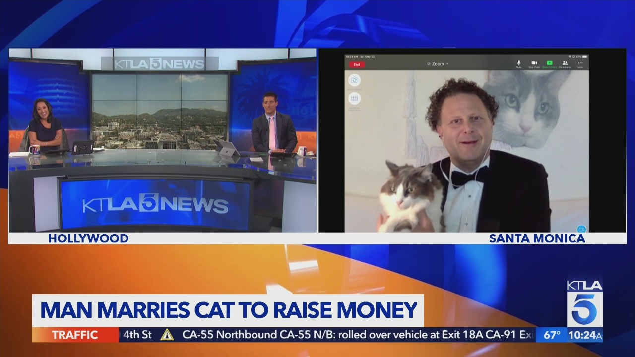 Man marries cat to raise funds for animal shelter