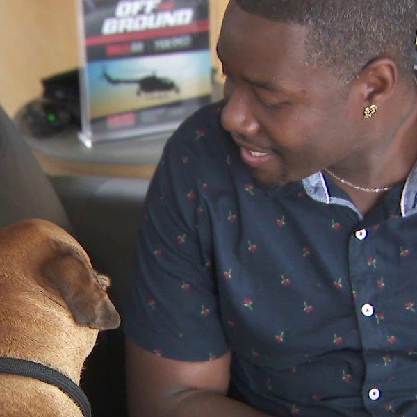 Derrick Maxwell adopted a 61-pound pit bull mix named Kodak. (KTLA)