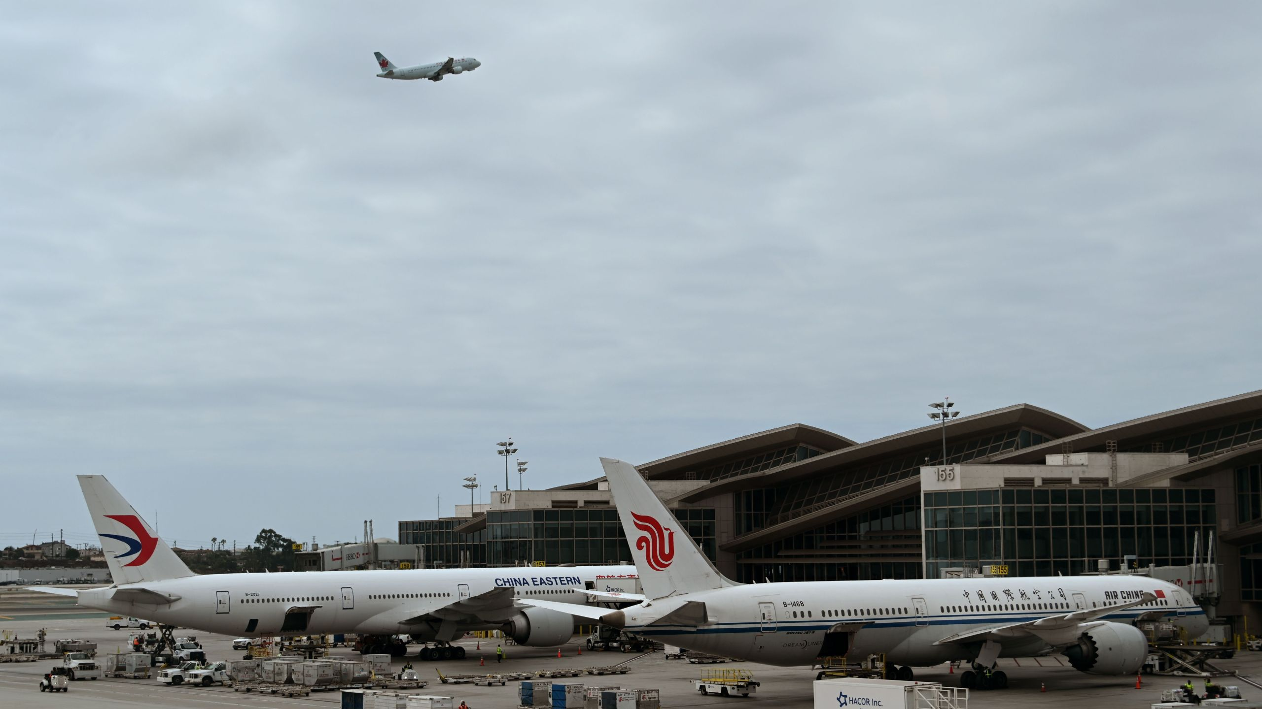 Air China and China Eastern planes wait at the gates at Los Angeles International Airport on Sept. 27, 2019. (DANIEL SLIM/AFP via Getty Images)