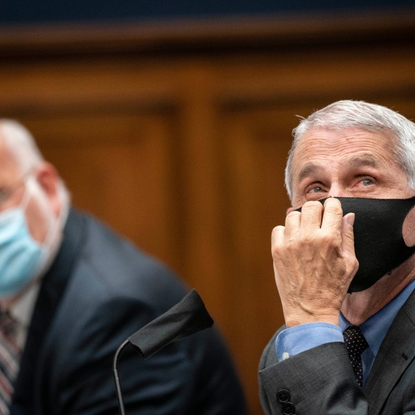 Robert Redfield, director of the Centers for Disease Control and Prevention (CDC), left, and Anthony Fauci, director of the National Institute of Allergy and Infectious Diseases, testify before the House Energy and Commerce Committee in Washington, DC, on June 23, 2020. (SARAH SILBIGER/POOL/AFP via Getty Images)