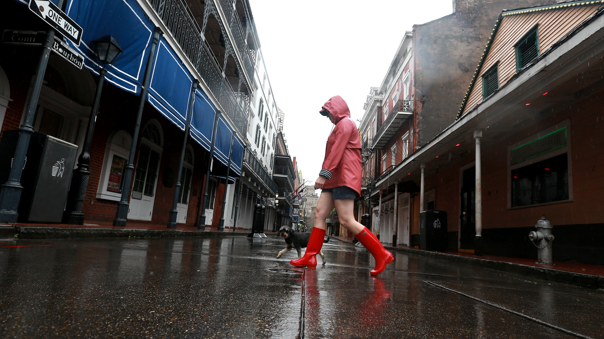A woman walks her dog through the French Quarter as Tropical Storm Cristobal nears the coast on June 7, 2020, in New Orleans, Louisiana. (Sean Gardner/Getty Images)