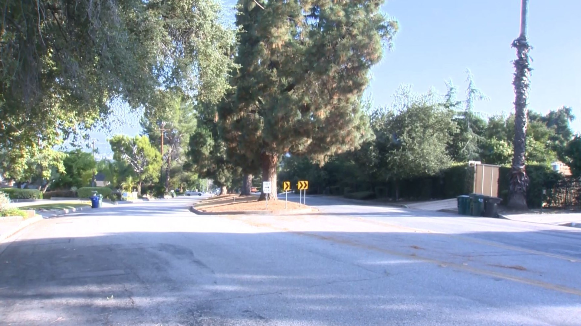 The 2000 block of North Santa Anita Avenue, as pictured on June 17, 2020. (KTLA)