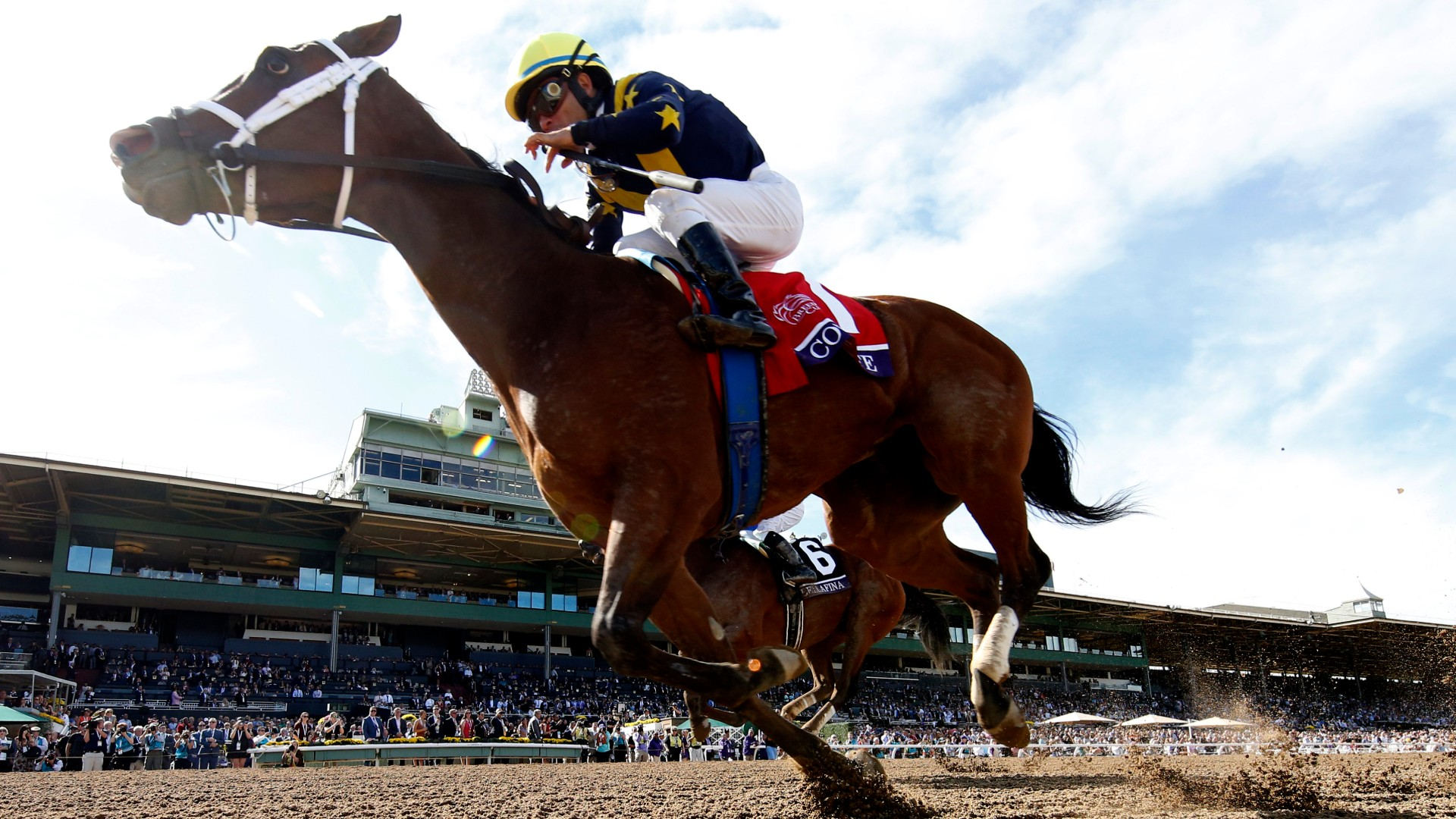 Jockey Joel Rosario aboard Covfefe wins the Filly and Mare race during the Breeders Cup at Santa Anita Park on Nov. 02, 2019. (Sean M. Haffey/Getty Images)
