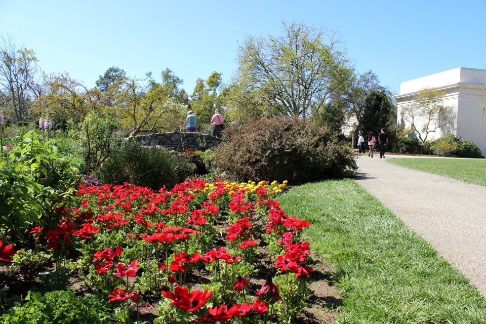 A garden at the Huntington is seen in a file photo from 2012. (KTLA)