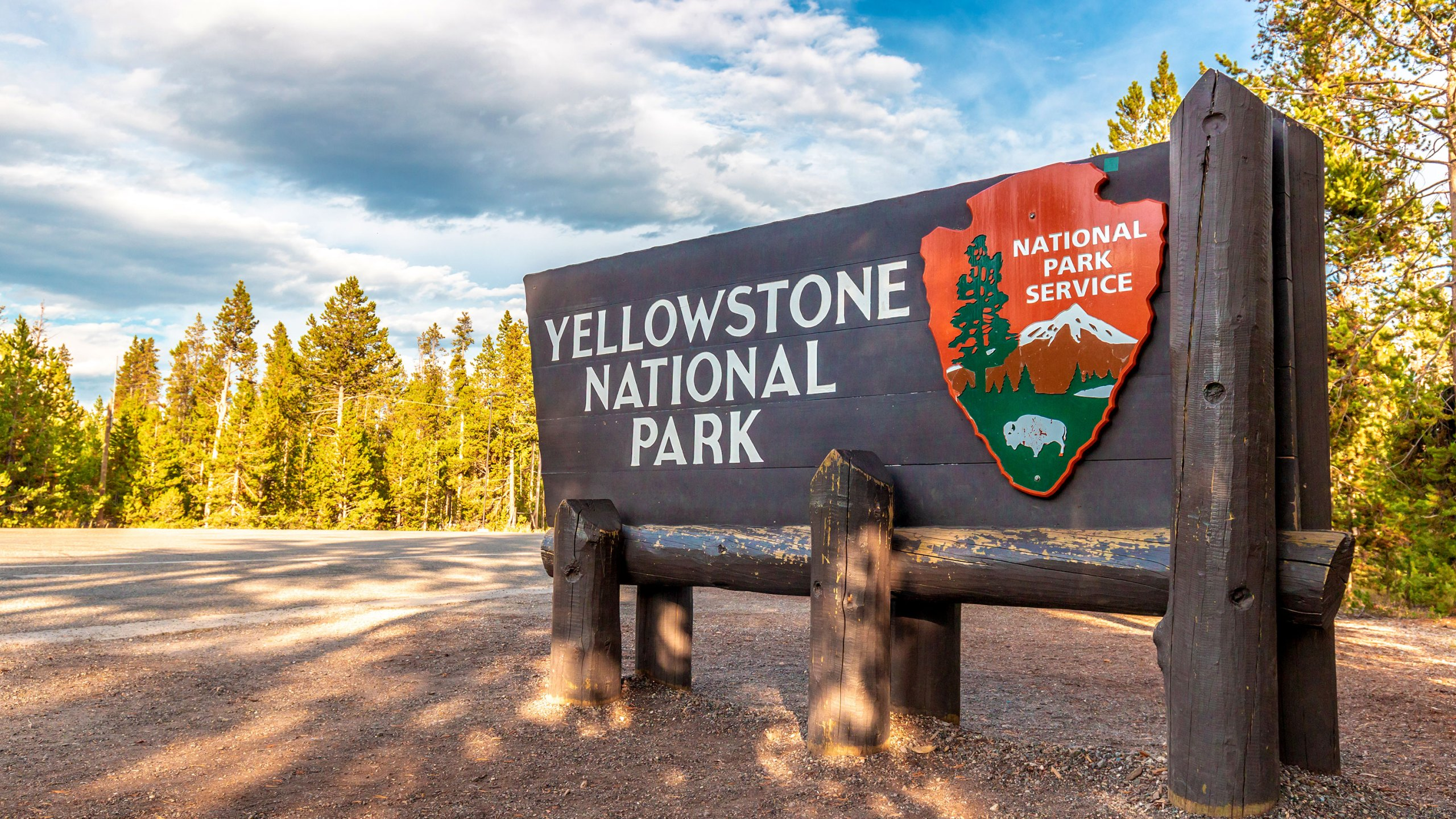 A woman was gored by a bison as she tried to take a picture of it in Yellowstone National Park. (Shutterstock via CNN Wire)