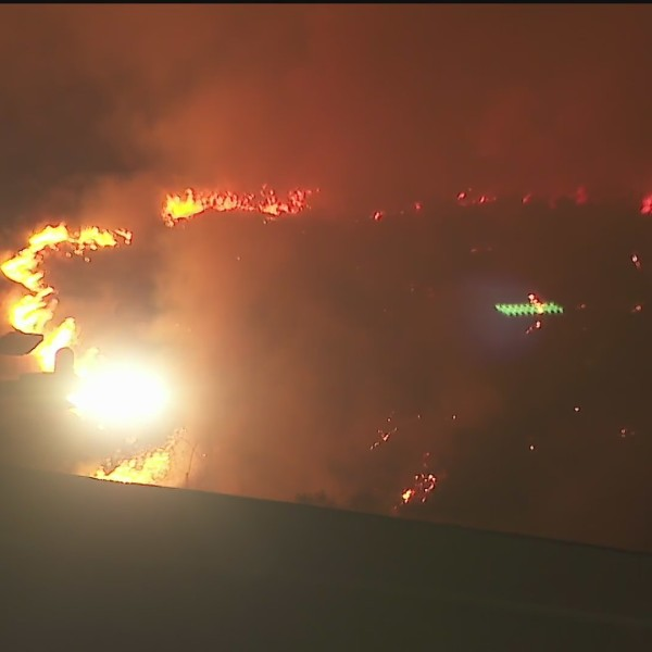 Firefighters respond to a brush fire in the Bel-Air area on June 10, 2020. (KTLA)